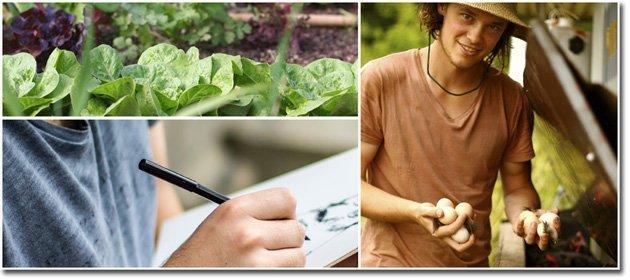 Drawing-eggs-lettuce