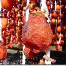 persimmons_drying