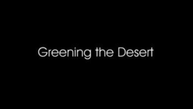 Photo of Greening the Desert II – Final