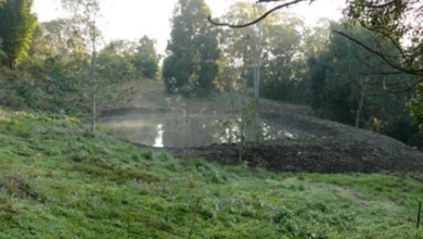 Photo of Constructing a Fishpond Dam