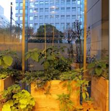 indoor_farm_tokyo-03