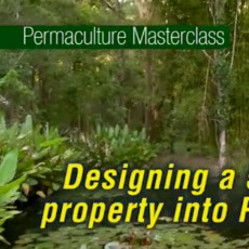 "Free Permaculture Videos: ""5 Acre Abundance on a Budget"" is LIVE!"