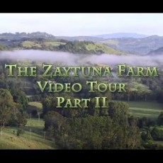 Zaytuna-Farm-Tour-2012