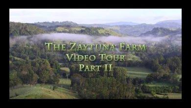 Photo of Geoff Lawton's Zaytuna Farm Video Tour – Part II