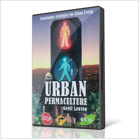 Urban-Permaculture