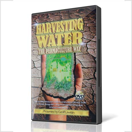 Water-Harvesting-the-permaculture-way