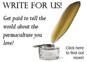Get paid to tell the world about the Permaculture you love!