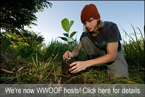 WWOOF Permaculture