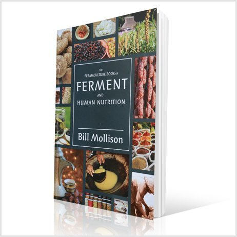 Ferment-and-human-nutrition