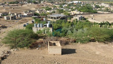 Photo of Rough, Ready, But Very Real – a November 2013 Update on the Jordan Valley Permaculture Project (aka 'Greening the Desert – the Sequel' Site)