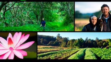 Photo of Free Tour of PRI Zaytuna Farm on International Permaculture Day (May 4, 2014)
