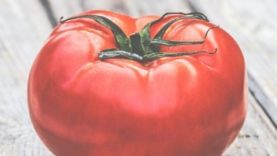 Photo of How to Save Tomato Seeds