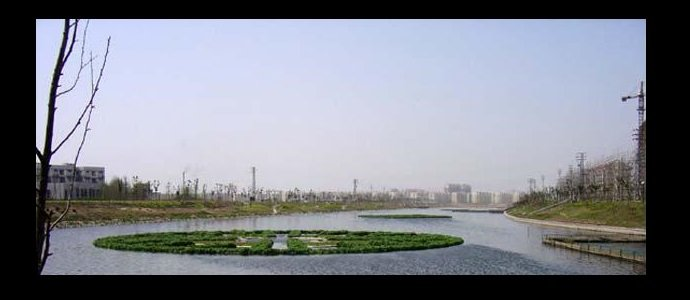 Photo of World's Largest Aquaponics Project, in China's Third Largest Aquaculture Lake