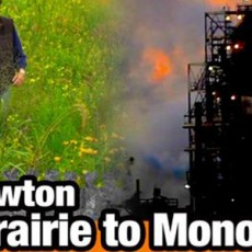 Monoculture-Geoff-Lawton