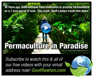 Permaculture in Paradise