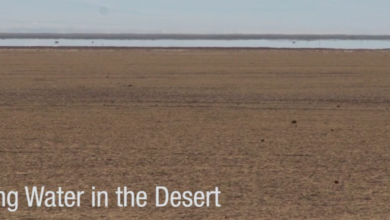 Photo of Finding Water in the Desert