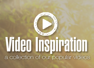Must-watch Permaculture Videos