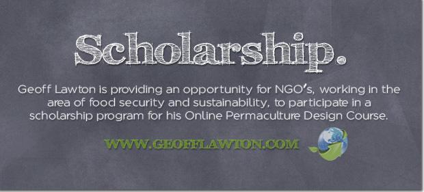 Scholarship_edited-2