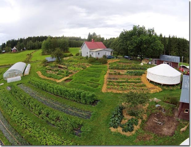 Setting Up A Permaculture Farm The Research