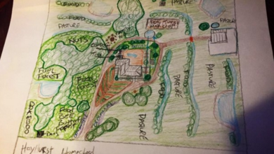 Photo of What Should I Charge as a Permaculture Design Consultant?