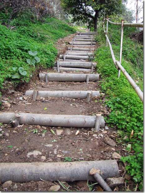 Steps,-Naturally
