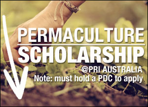 Permaculture Scholarship