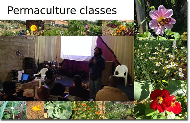 Therapeutic-Permaculture-2
