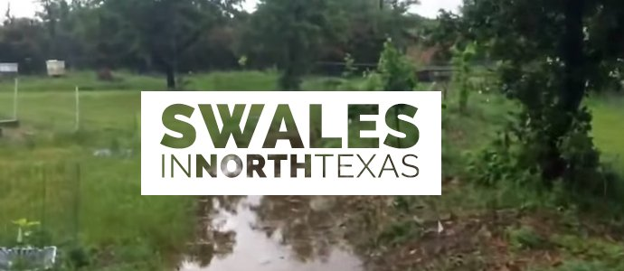 Swales-In-Texas