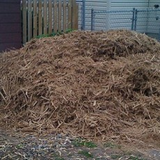 What a Pile of Mulch (Courtesy of Joe Hoover)