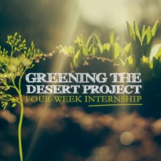 Greening-the-desert-Internship-Thumb