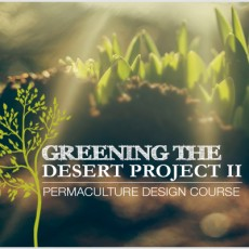 Greening-the-desert-PDC-Course