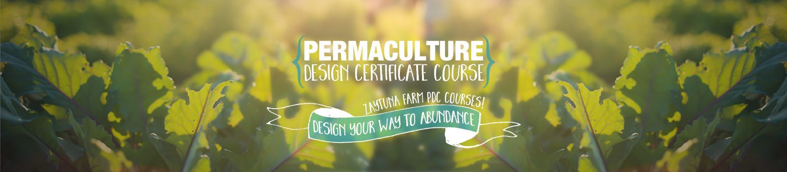 Design Exercises In Permaculture Design Certificate Pdc Courses
