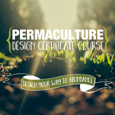 Permaculture-Design-Certificate-Course-Greening-The-Desert
