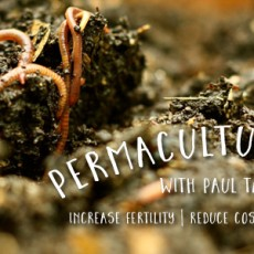 Permaculture-Soils-Paul_taylor-Feature