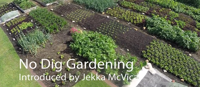 Image Result For Organic Mulch For Vegetable Garden