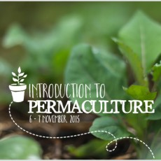 Introduction-to-Permaculture