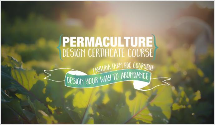 Permaculture-Design-Certificate-Course