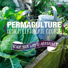 Permaculture-Design-Course-Tom-Kendall