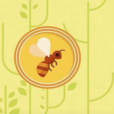 bee colony colapse