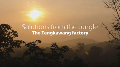 Photo of Solutions from the Jungle: The Tengkawang Factory