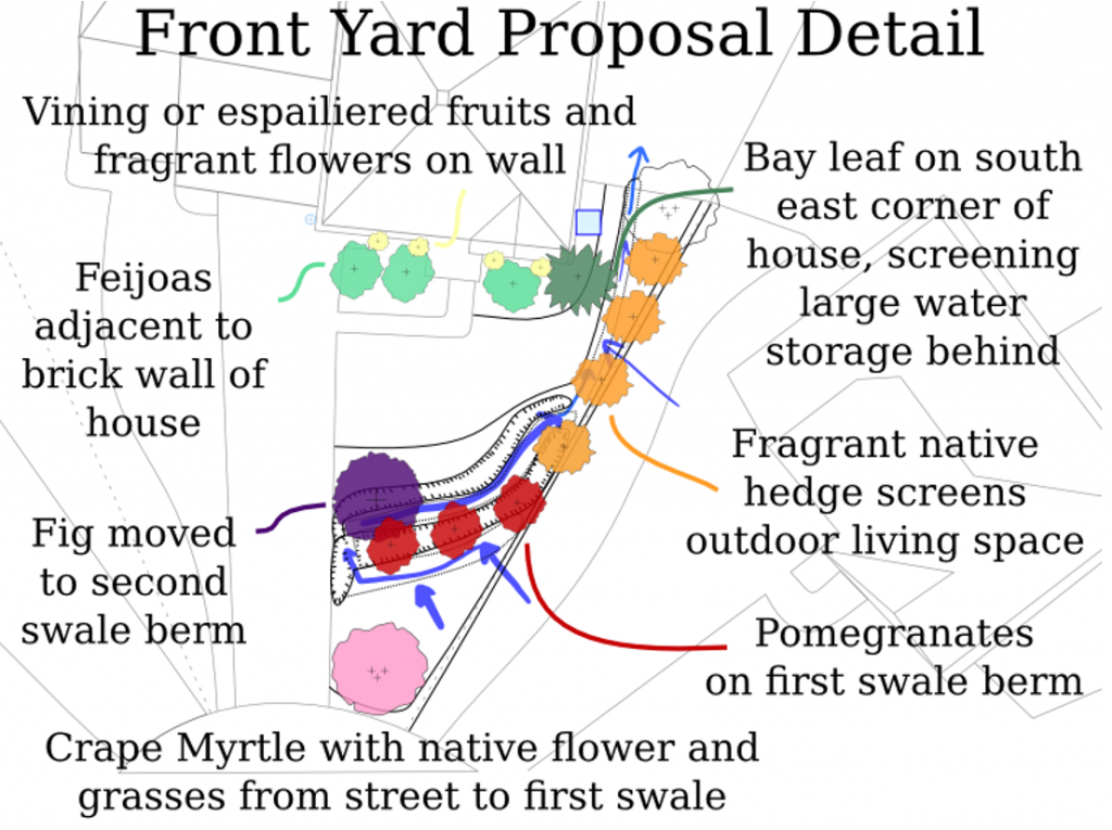 Figure 5-2 Front Yard Proposal Detail with planned new species, earthworks, and outdoor living