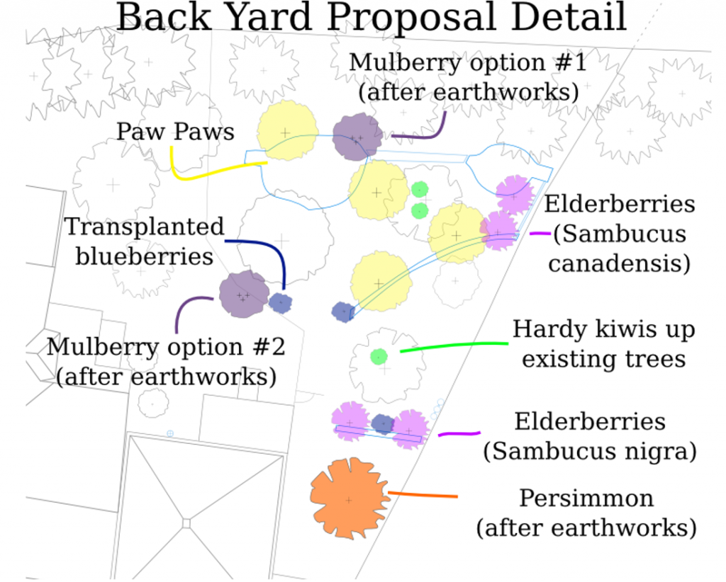 Figure 5-3 Backyard Proposal Detail with planned new species