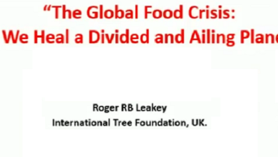 Photo of Food Tank Webinar Series with Dr. Roger Leakey on The Global Food Crisis