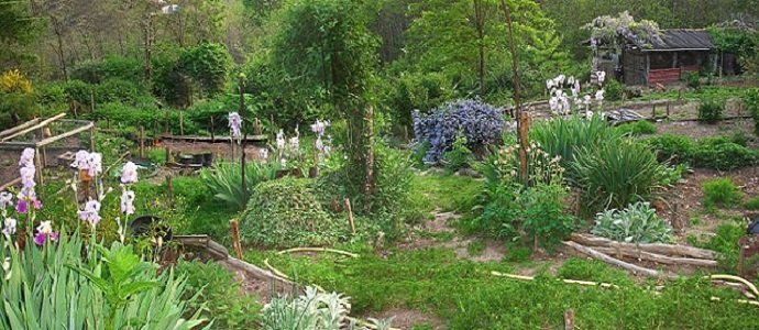 Piecing Together A Guild Of Your Own The Permaculture