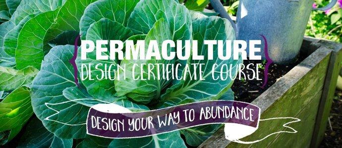 Permaculture-Design-Certificate-Course-PRI-Sunshinecoast