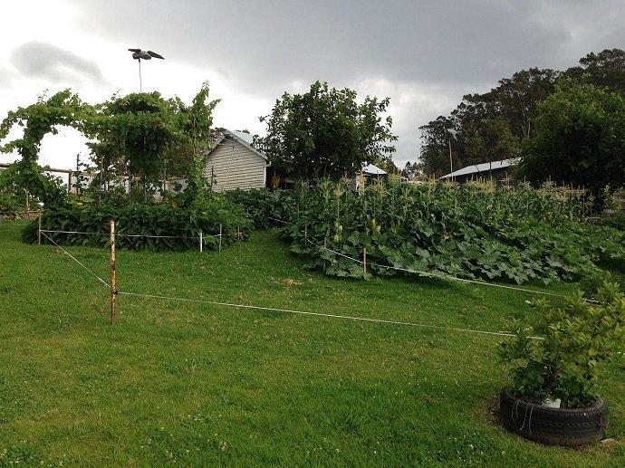 Our Farm... 2014 / 2015