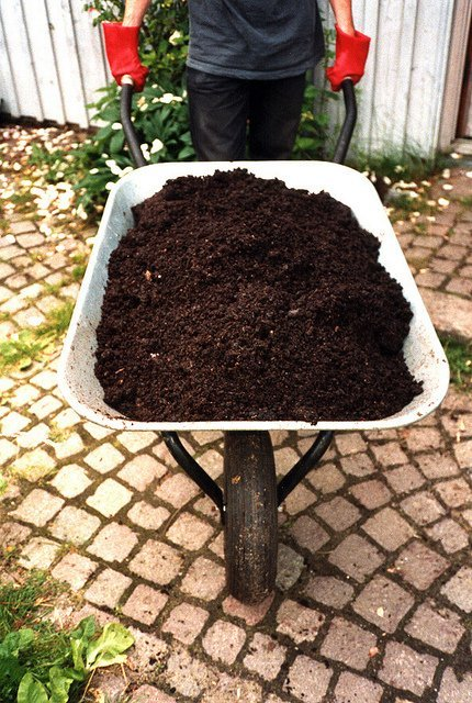 Fresh-Smelling Compost (Courtesy of SuSanA Secretariat)