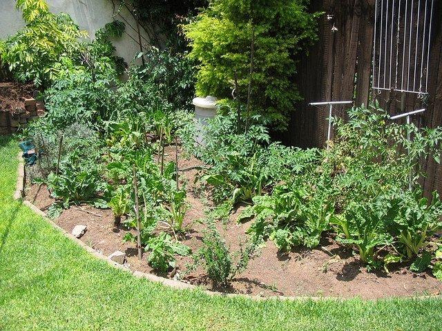Suburban Vegetable Garden Run Off Humanure (Courtesy of SuSanA Secretariat)