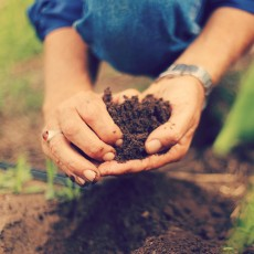 Compost-and-Natural-Fertiliser-Course