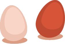 Egg-02